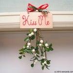 mistletoe 2